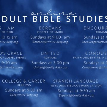 Online Adult Bible Study