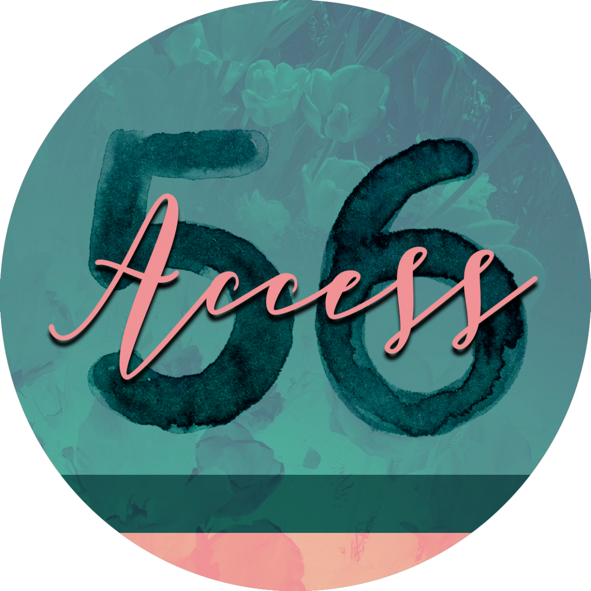 Access 56